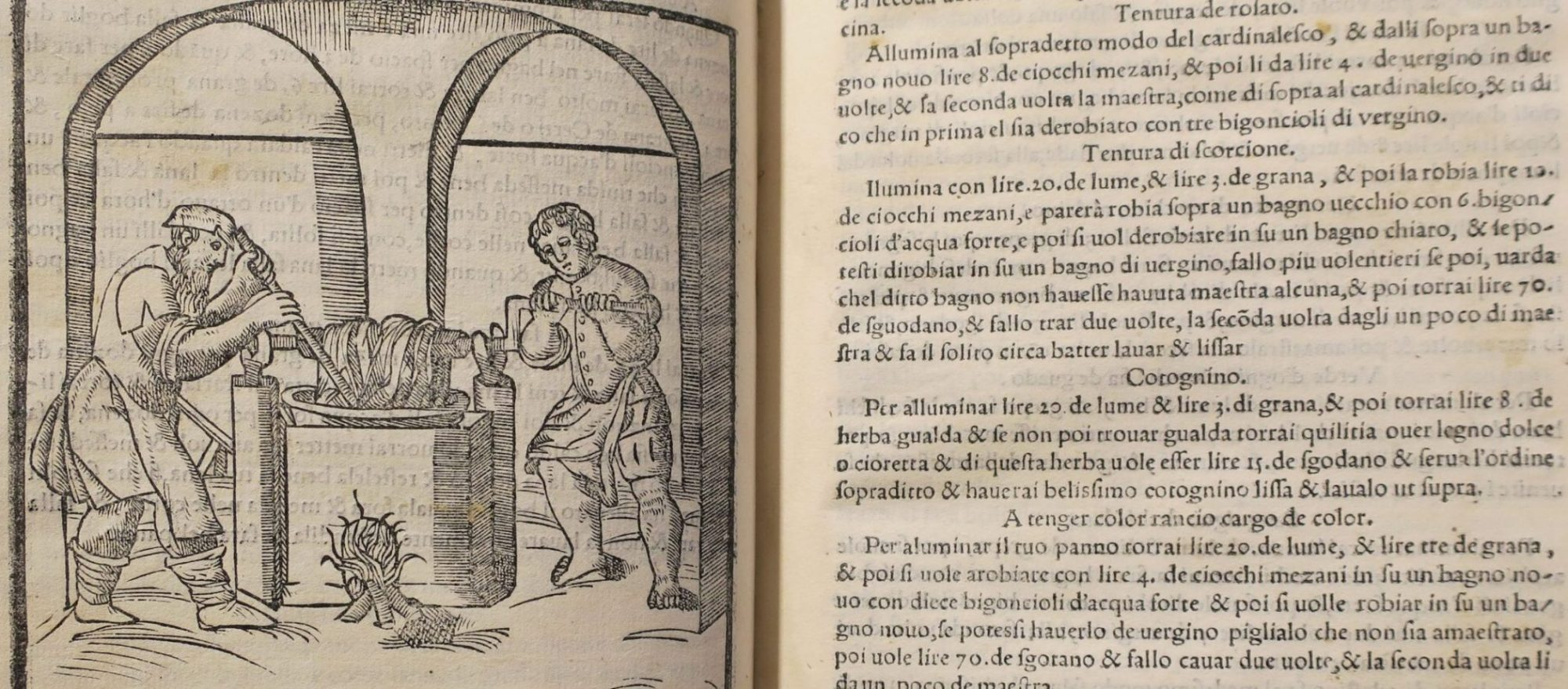 Plichto - oudeste boek uit de bibliotheek